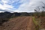 16559 Doe Trail - Photo 11