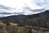 16559 Doe Trail - Photo 8