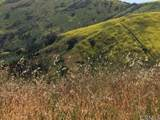 46 Saddlebow - Photo 5