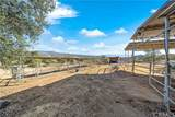 31305 Red Mountain Road - Photo 40