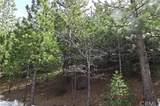 0 Spruce - Photo 4