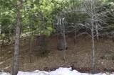 0 Spruce - Photo 6