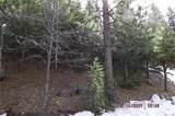 0 Spruce - Photo 7