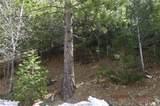0 Spruce - Photo 8
