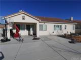 10362 Daylily Street - Photo 26