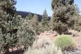 2809 Erwin Ranch - Photo 14