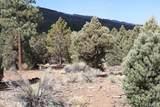 2809 Erwin Ranch - Photo 15