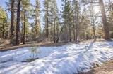 1005 Wilderness - Photo 11
