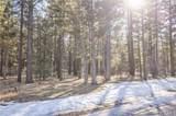 1005 Wilderness - Photo 9