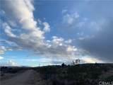 14 Cambria - Photo 3