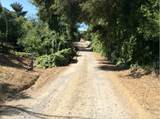 30545 Shady Creek - Photo 8