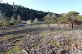10122 El Capitan - Photo 7