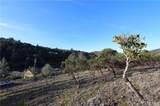 10122 El Capitan - Photo 8