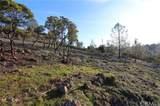 10122 El Capitan - Photo 10