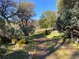 3582 Creek View Drive - Photo 12