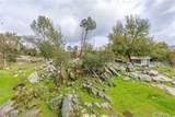 4189 Ramsden Road - Photo 12