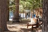 31684 Silver Spruce Drive - Photo 21