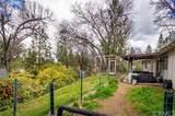 39670 Pine Ridge Road - Photo 14