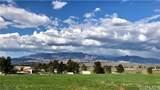 249 Box Springs - Photo 8