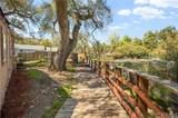 20362 Trabuco Oaks Drive - Photo 9