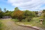 634 Via Bandolero - Photo 41