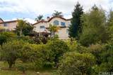 634 Via Bandolero - Photo 43