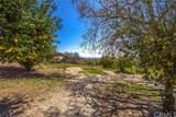 1031 Deercrest Drive - Photo 43