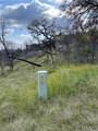 3786 Bronco Hollow Rd - Photo 9