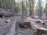 7245 Yosemite Park - Photo 19