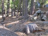 7245 Yosemite Park - Photo 21