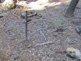 7245 Yosemite Park - Photo 8