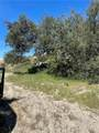 3 Willow Canyon - Photo 3