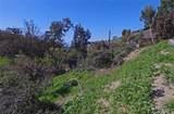 1260 Bluebird Canyon - Photo 10