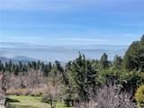 2426 Spring Oak Drive - Photo 4