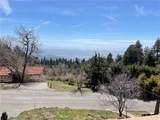 2426 Spring Oak Drive - Photo 47