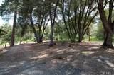1707 Shany Creek - Photo 72