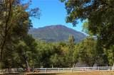 39450 Fair Oaks Drive - Photo 69