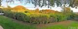 636 Camino Rojo - Photo 42
