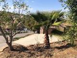 14422 Four Winds Road - Photo 4