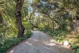 3007 Felicita Road - Photo 58