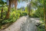 3007 Felicita Road - Photo 64