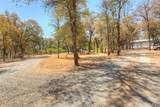 208 Rolling Oaks Lane - Photo 60