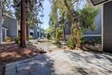 25479 Pine Creek Lane - Photo 33