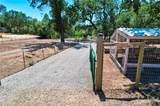 16711 Cache Creek Lane - Photo 71