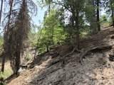 0 Dogwood - Photo 1