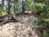 0 Dogwood - Photo 3