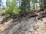 0 Dogwood - Photo 4
