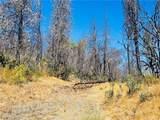 12657 Elk Mountain - Photo 17