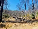 12657 Elk Mountain - Photo 18