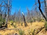 12657 Elk Mountain - Photo 19